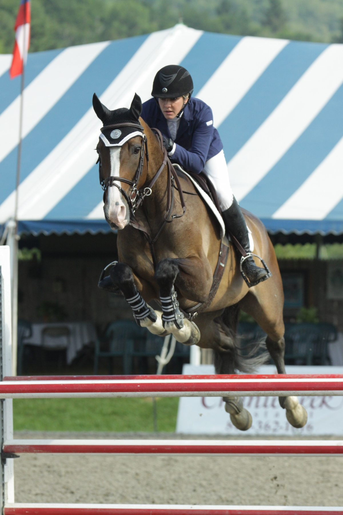 Rebecca Meitin and Zulu won the $2,500 Marshall & Sterling Adult Amateur Jumper Classic on Sunday, July 19, at the Vermont Summer Festival in East Dorset, VT.<br><b>Photo by <a href='http://www.photoreflect.com/home/default.aspx' target='_blank'>David Mullinix Photography</a></b>