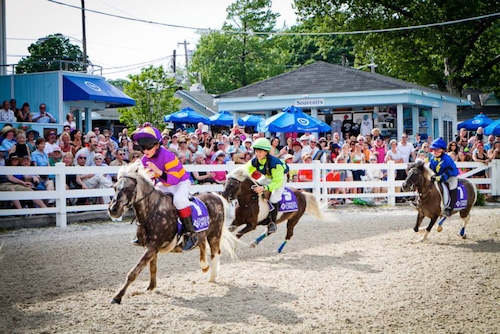The 2015 WIHS Shetland Pony Steeplechase Championship Series, presented by Charles Owen, will be held at the Devon Horse Show on Sunday, May 24, and Monday, Memorial Day, May 25, and at the Washington International Horse Show on Barn Night, October 22, and Grand Prix Night, October 24, at Verizon Center in Washington, D.C.