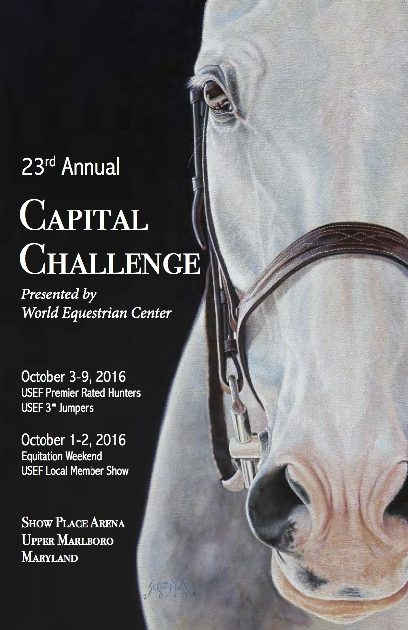 The cover artwork for the 2016 Capital Challenge Prize List, painted by official artist Sharon Lynn Campbell.