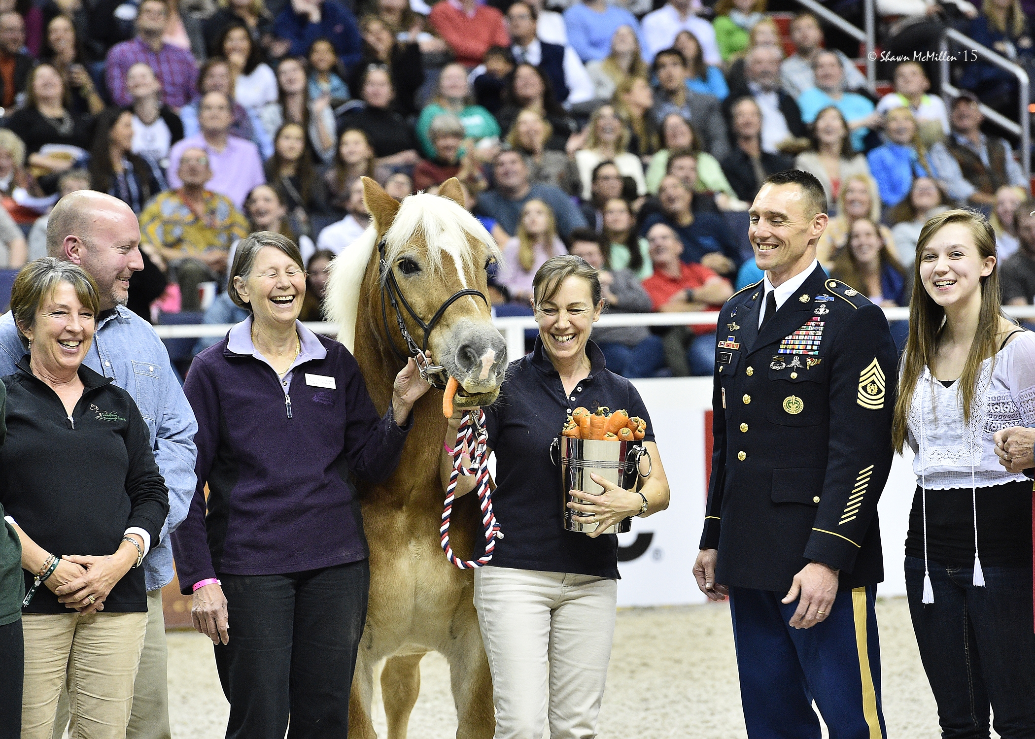 2015 Klinger Award Winner: Andy, a 20-year-old Haflinger pony from Loudoun Therapeutic Riding Center in Leesburg, Virginia. <br><b>Photo by <a href='http://www.shawnmcmillen.com/' target='_blank'>Shawn McMillen Photography</a></b>