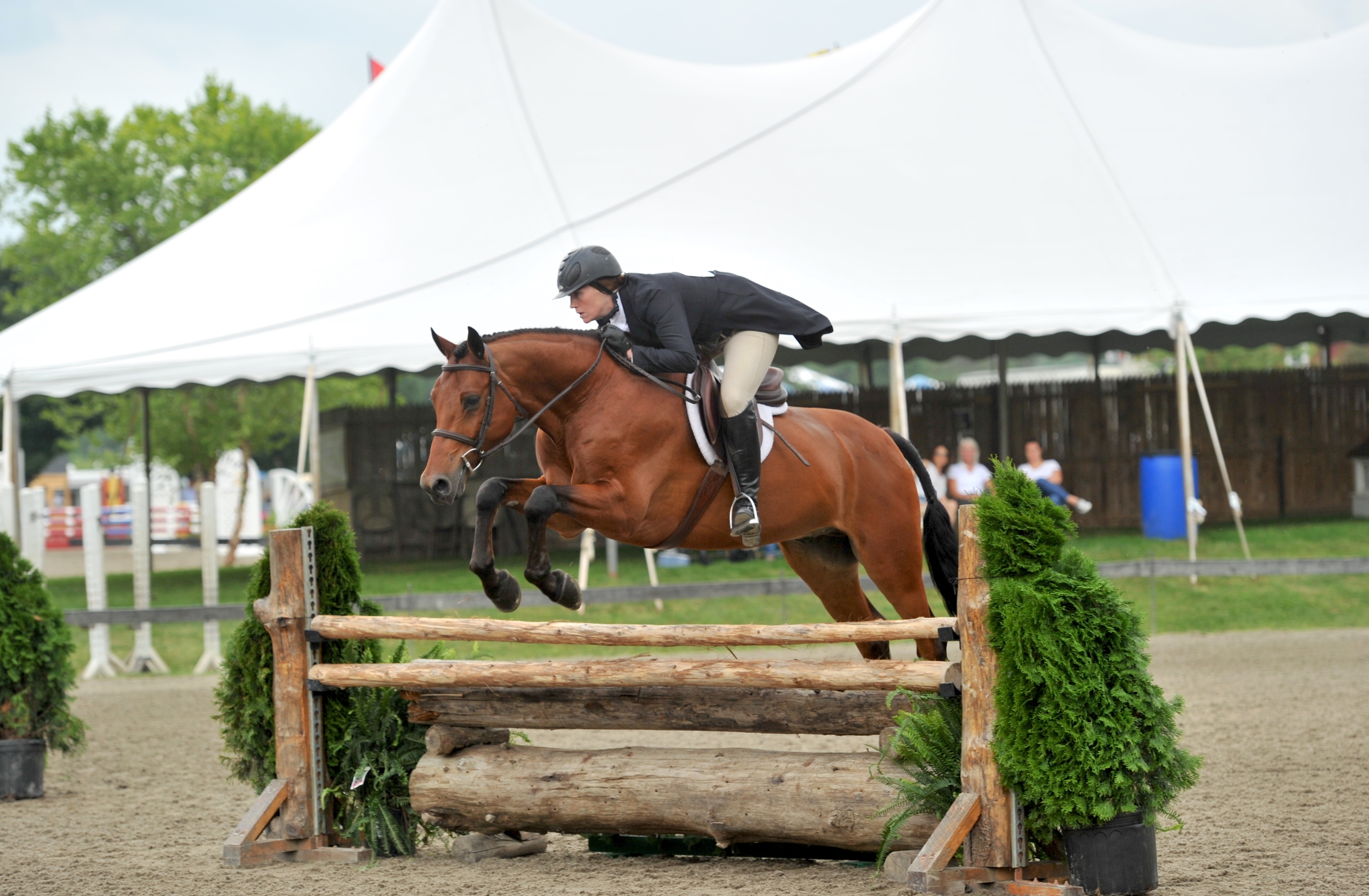 "Sarah Barge and Danturano won the $5,000 3'3"" NEHJA Hunter Derby, presented by Eastern Hay, and the $15,000 3'3"" NEHJA Hunter Derby, presented by Land Rover Experience, before also being named circuit champions in the 3'3"" Pre-Green Division at the Vermont Summer Festival.<br><b>Photo by <a href='http://www.andrewryback.com/' target='_blank'>Andrew Ryback Photography</a></b>"