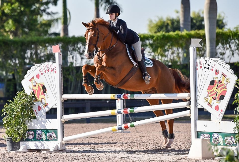 ushja introduces 3 3 jumping seat medal finals on either coast