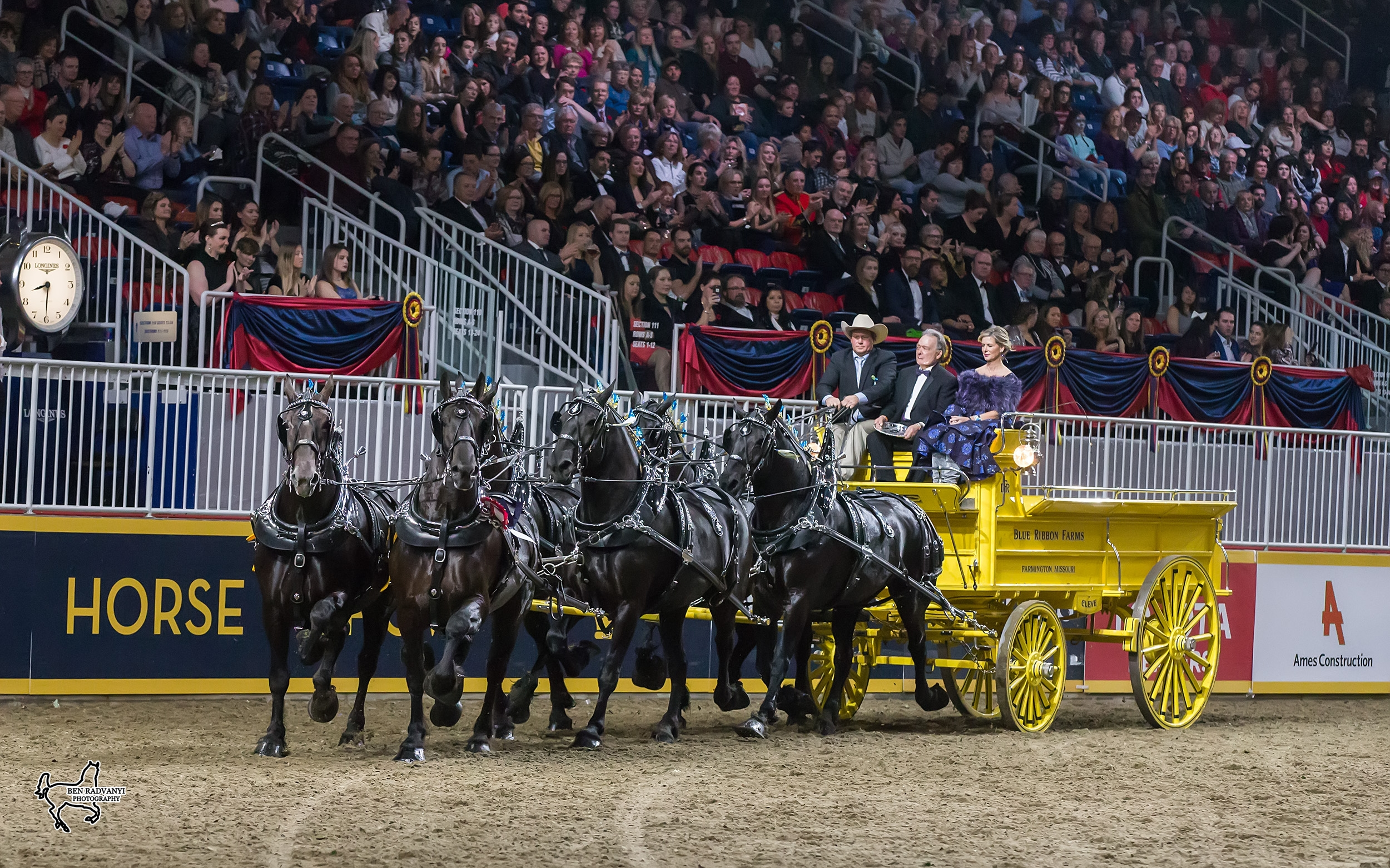 Blue Ribbon Days Percherons, driven by Dean Woodbury and owned by the Albert Cleve and Jim Day families, won the $25,000 Royal Six-Horse Draft Championship on closing night of the 2017 Royal Horse Show in Toronto, ON. <br><b>Photo by <a href='http://benradvanyi.photoshelter.com'target='_blank'>Ben Radvanyi Photography</a></b>