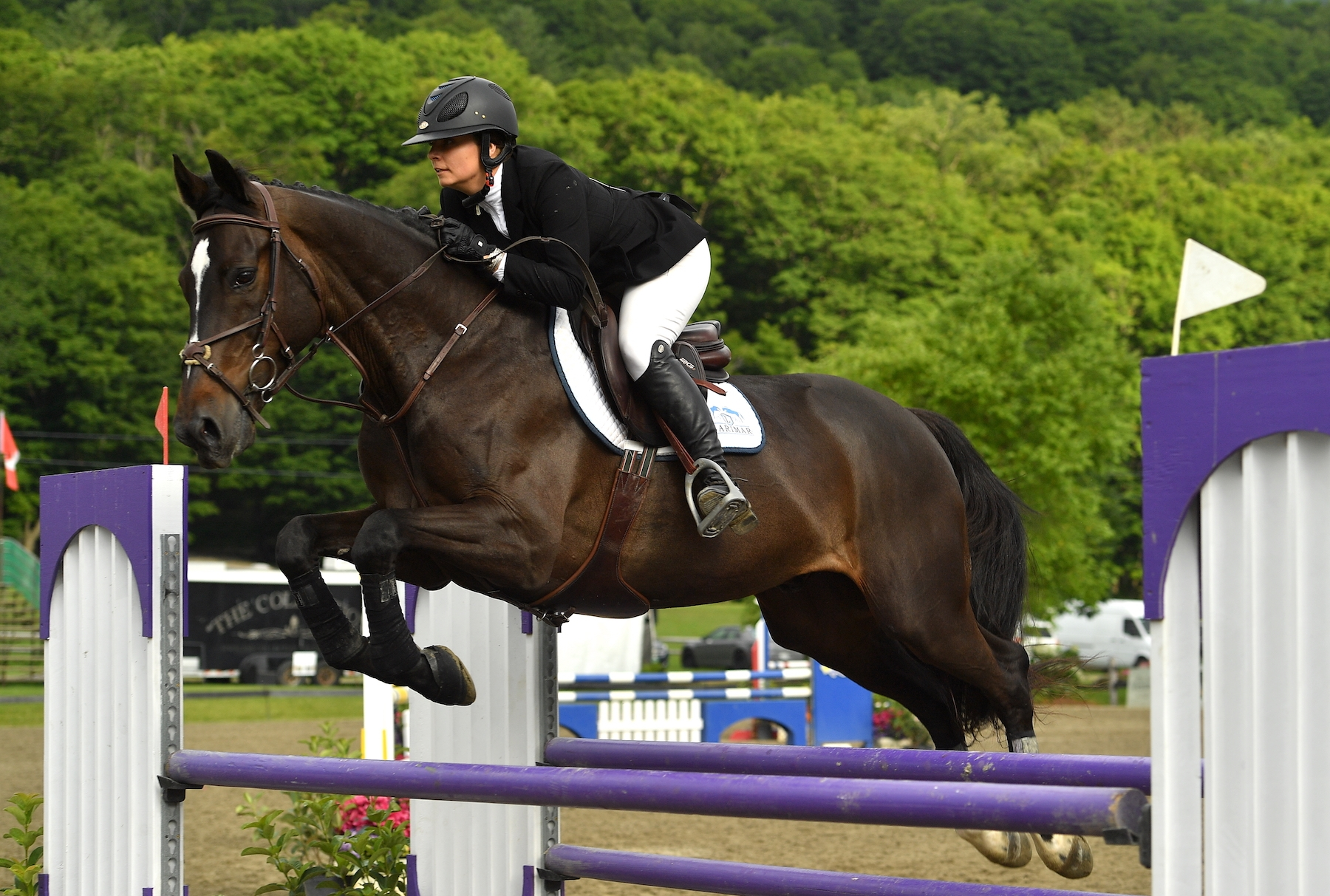 Katie Carson won the $2,500 Marshall & Sterling Adult Amateur Jumper Classic riding Aburhal on Sunday, July 14, at the Vermont Summer Festival in East Dorset, VT.<br><b>Photo by <a href='https://www.andrewryback.com/' target='_blank'>Andrew Ryback Photography</a></b>