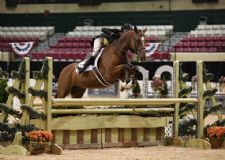 50 Questions with Liza Boyd at The Capital Challenge Horse Show
