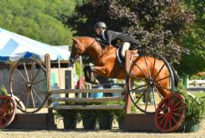 Katie McVeigh Claims Hunter Derby Victory at Vermont Summer Festival